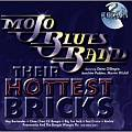 Audio CD Cover: Their Hottest Bricks von Peter Müller